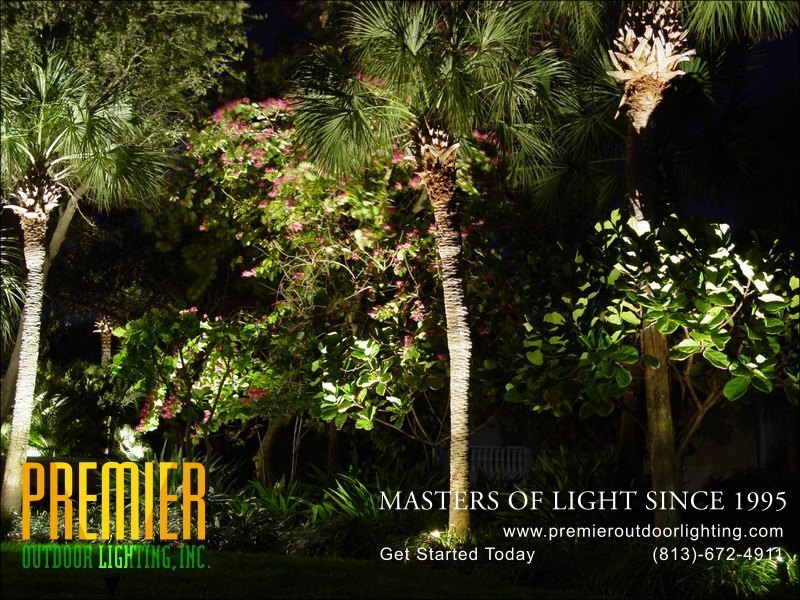 Landscape lighting photo gallery : Landscape lighting photo gallery image premier outdoor